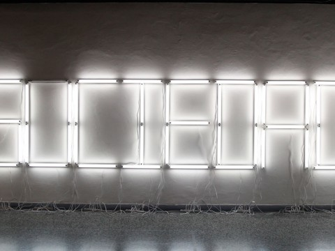 Lapsus, 2010 / Fluorescent lamps / Dimensions variable